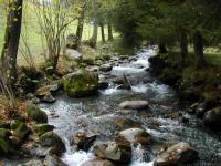gite Bagnères de Bigorre Chalet Nature