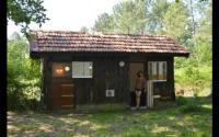 Gîte Rion des Landes Gîte Cabane en forêt