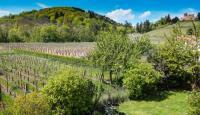 tourisme Saint Maurice Relais des vignes