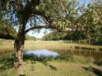 La maison du garde chasse et son étang-L-etang