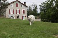 Gîte Saint Girons en Béarn Gîte Lescarboura