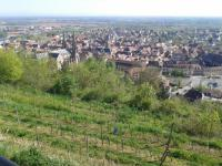 gite Wolxheim Gîte du Solarium au Clos Sainte Odile