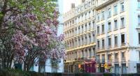 Hôtel Lyon Hotel Des Celestins
