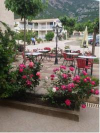 Hotel en bord de mer Corse Hôtel Camparellu