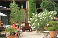 Hotel 4 étoiles Saint Rémy de Provence hôtel 4 étoiles Haras Saint Esteve