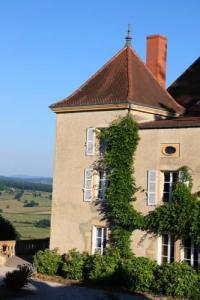 Hôtel Saint Léger sur Vouzance hôtel Chateau De Martigny