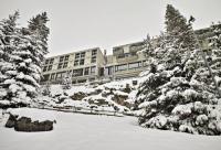 Hotel de charme Nancy sur Cluses hôtel de charme Terminal Neige - Totem