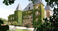 Hôtel Bénaménil hôtel Chateau D'adomenil