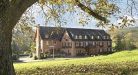 Hôtel Birkenwald Hotel Des Vosges