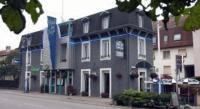 Hôtel Romain aux Bois Hotel Des Vosges