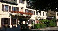 Hôtel Zellwiller Hotel Restaurant Des Vosges