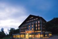 Hôtel Auvergne hôtel Logis Du Puy Ferrand