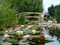 Jardin Pruzilly Les Jardins Aquatiques Et Son Musee