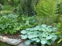 Jardin de La Moisonnais-au-bord-du-ruisseau-de-Crincoet