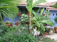 Jardin Divajeu Le Clos Fleuri