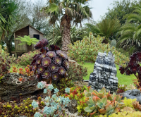 le jardin de guy piret-jardin-99174033