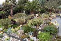 Jardin Saint Renan le jardin de guy piret