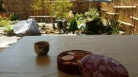Jardin Colomiers jardin japonais Wakaba