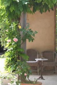 Chambre d'Hôtes Auvergne Tuin-kamer