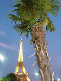 Chambre d'Hôtes Courbevoie EIFFEL TOWER Home in Paris