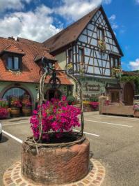Chambre d'Hôtes Alsace Domaine Du Winmuehl