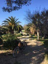 Chambre d'Hôtes Saint Étienne du Grès l'Oasis en Provence