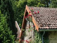 gite Laferté sur Amance Magnificent Castle in Anrosey with Garden