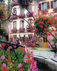 gite Itterswiller Maison centre Alsace