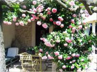 gite Plan d'Orgon Holiday home Chemin de Valloncourt