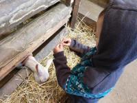 gite Villabé chalet à la ferme la doudou