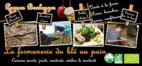 Chambre d'Hôtes Auvergne La Fermanerie - Les Gîtes