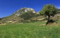 Gîte Aspres sur Buëch Gîte Maison de village Baronnies provençales Hautes-Alpes L'Epine