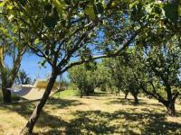 gite La Forêt sur Sèvre Grand Gîte de 14 personnes à 15 mins du Puy du Fou