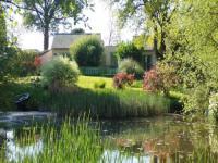 gite Fay de Bretagne House Au jardin d'eau - bambou zen