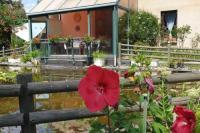 gite Ossun Studio, Véranda, Jardin de l'abondance