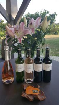 gite Bordeaux GITE CANTELOUP