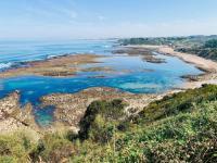 gite Biarritz Surf à pied ! La plage à 200m, maison avec jardin