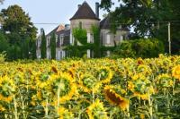gite Nanteuil Auriac de Bourzac Saint-Martin-de-Riberac Chateau Sleeps 16 Pool WiFi