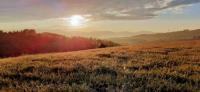 gite Assieu Une pause sur la colline
