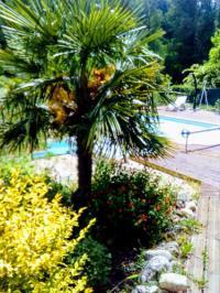 Hotel Fasthotel Ardèche Auberge de Barnas