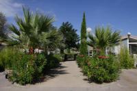 Terrain de Camping Languedoc Roussillon Location en Mobil home au Camping Hameau Des Cannisses