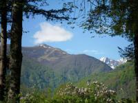 Terrain de Camping Suc et Sentenac Camping Le Haut Salat