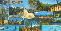 gite Saint André d'Embrun Parc Résidentiel de Loisir : Le Loup Blanc du Riou