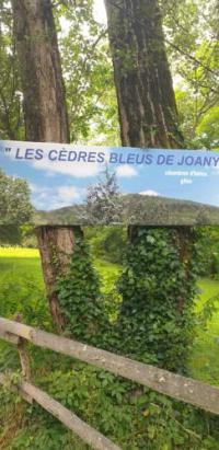Hôtel Drulhe hôtel Les Cèdres Bleus
