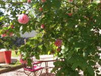 Gîte La Bâtie Montsaléon Gîte Le Jardin