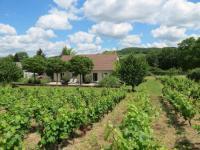 gite Saint Maurice lès Couches Les Vignes de Paris