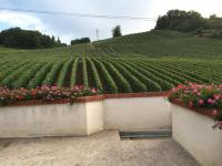 gite Chigny les Roses La Loge Du Vigneron