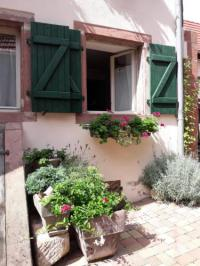 gite Bouxwiller charmant petit appartement en Alsace