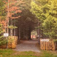 Terrain de Camping Aude Domaine de la Vitarelle Glamping