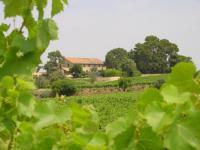 Location de vacances Alignan du Vent Location de Vacances Le Ramonet et Le Grenier